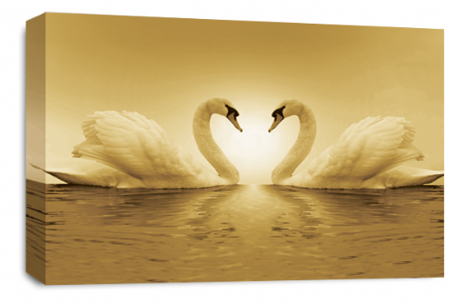 Love Heart Wall Art Picture Kissing Swans Sepia White Print